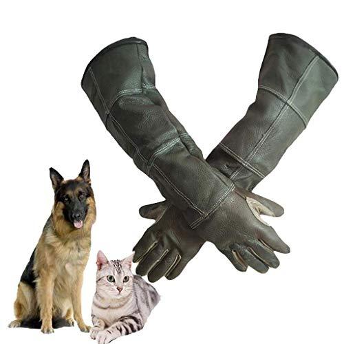 F-F-C Tierbehandlungshandschuhe Hunde, Katzen, Vögel, Papageien, Eidechsen, Anti-Biss/Kratzer, Gartenbau, Wildlife Protection, Anti-Bite-Tier Verdicken Handschuhe, (Size : M)