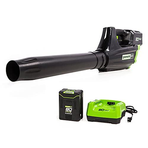Greenworks Pro 80V (125 MPH / 500 CFM) Cordless...