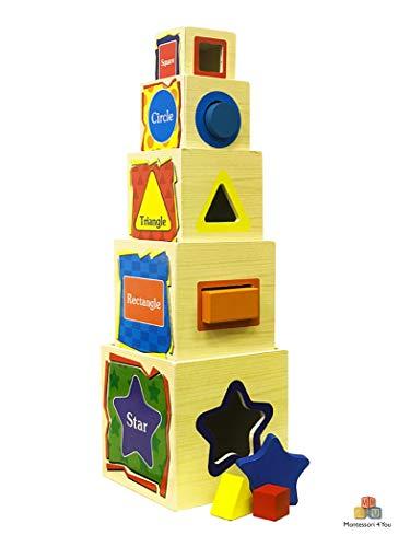 Montessori 4 You Torre di Cubi - Wisdom Shape Set Box