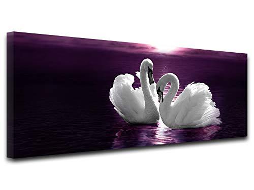 Declina - Cuadro de animales, impresión sobre lienzo, cuadro de decoración de pared, cuadro impreso, cuadro decorativo panorámico de los cisnes (80 x 30 cm), Lona, morado, 100x35 cm