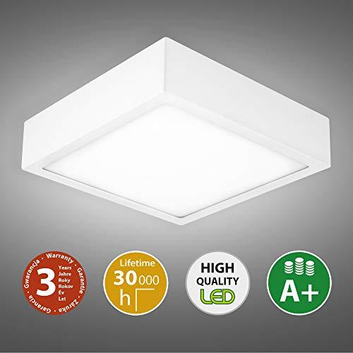 Vanda vierkante LED plafondlamp plafondlamp 14W & 24W 3000 & 4000K badkamer woonkamer werkkamer slaapkamer