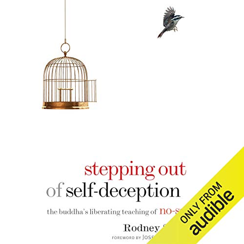 Stepping Out of Self-Deception Titelbild