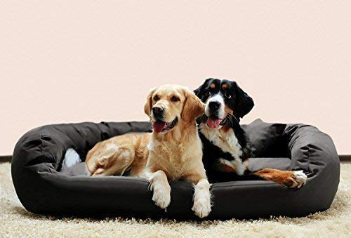 tierlando® Hundebett Orthopädisch Große Hunde - Ares Visco Oval - Hundesofa Hundekissen Dog Bed Waschbar XL Grau
