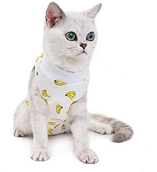 LYYJF Combinaison de récupération anti-léchage en coton respirant pour chat - Alternative après une chirurgie - Pour plaies abdominales, peau chirurgicale, C, XL