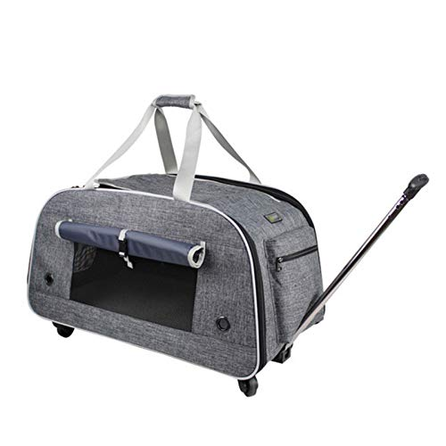 REW Pet Carrier Bag, Portable Cat Carrier Bag Top Opening, Foldable Cat Carrier Transport Bag for Dogs and Cats, with Shoulder Strap