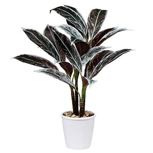 Plantas artificiales de 63 cm de cordyline Fruticosa decorativas para interiores tropicales en maceta blanca para el hogar u oficina