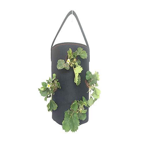 Milkkktt Erdbeer-Pflanzbeutel,Garten Blumentöpfe Pflanzgefäße Maß Hängende Wand Grüne Tasche Vliespflanzen-Pflanzregal Vertikaler Wandgarten Pflanzgefäß, das Pflanzbeutel für Garten hängt