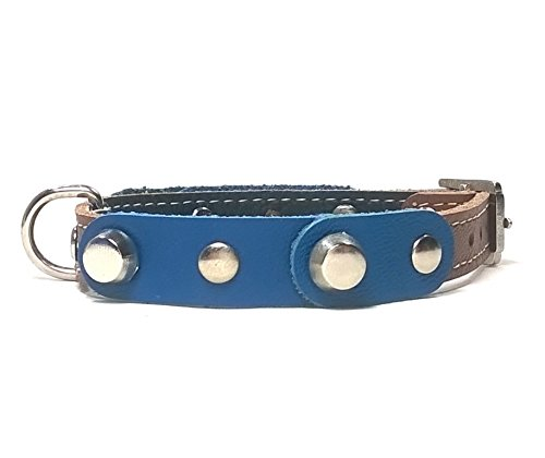 Hundehalsband Handmade, Handgemacht Design für Welpen, Kleine Hunde und Chihuahuas, Ausgefallen Robust Blau Braun Leder mit Silber Nieten, 35 cm XS: Halsumfang 25-30 cm, Breit 14mm