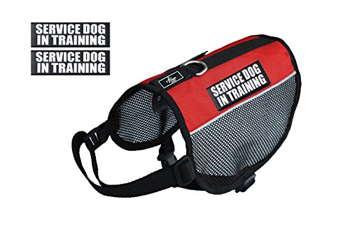 Service Dog in Training mesh Vest Harness Cool Comfort. Purchase Comes with 2 Reflective Service Dog in Training Removable Patches. Please Measure Your Dog Before Ordering