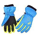Azarxis Kids Guantes de Nieve Guantes de esquí de Invierno Impermeable a Prueba de Viento para niños Girl Boy Snowboarding Trineo Ciclismo Esquí de montaña con puños Ajustables (Azul, XS (3-5 años))