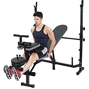 Adjustable Sit Up Bench, Incline and Decline Dumbbell Workouts Bench with Preacher Curl Leg Developer and Crunch Handle, Weight Capacity Rated for Abs Exercise Full Body Workout (Black)