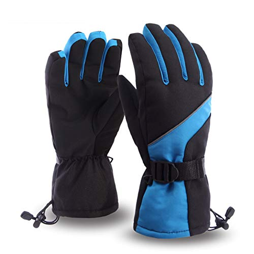 Para esquiar de invierno. Guantes de esquí para hombres Cálidos guantes de snowboard de invierno Guantes con aislamiento Guantes impermeables a prueba de viento Guantes de esquí ( Color : Blue )