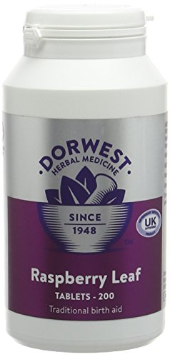 Dorwest Herbs Raspberry Leaf Tablets for Dogs and Cats 200 Tablets