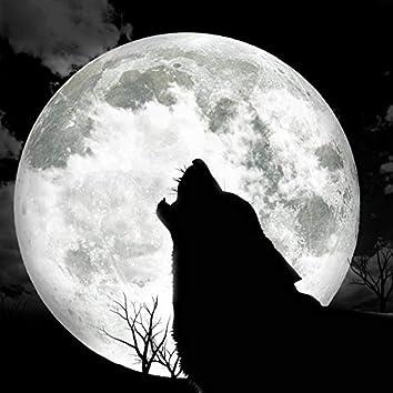 Darkness (The Wolf)