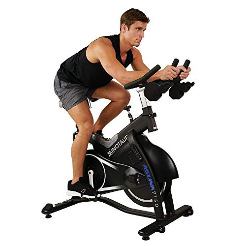 Asuna Minotaur Magnetic Belt Exercise Bike