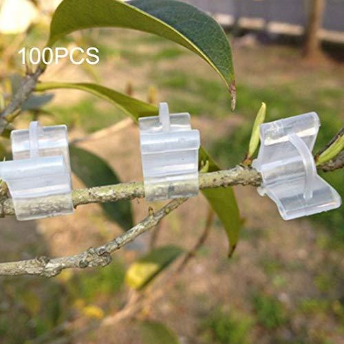 Fenghezhanouzhou 100 PCS Greffage De Plantes De Jardinage en Plastique Dossier De Greffes De Greffage Clip Transparent De Jardinage des Graines en Plastique Clip De Greffage