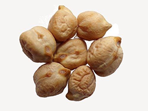 Pois Chiche Commun - 100 grammes - Cicer Arietinum - Chickpea - SEM02
