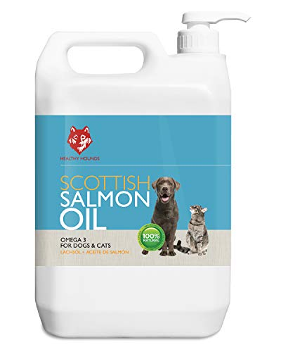 Healthy Hounds Scottish Salmon Oil For Dogs, Cats, Horses, Ferrets & Pets 100% Pure Premium Food Grade - Natural Omega 3, 6 & 9 Supplement - Promotes Coat, Skin, Joint and Brain Health (5000 ml)
