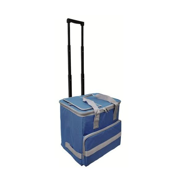 41sEVq5oAaL. SS600  - PAPILLON 5080126 Nevera Bolsa Termica 38 litros Azul Trolley