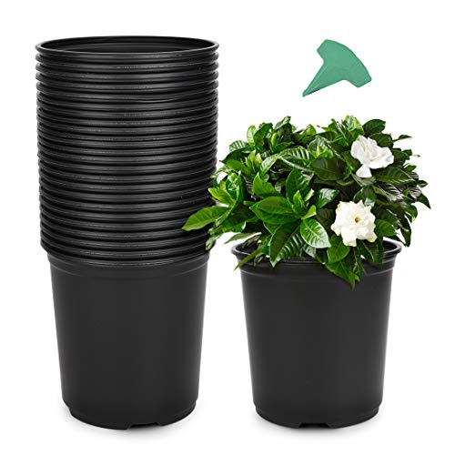 small plastic plant containers - 2