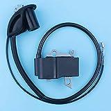 Módulo de bobina de encendido compatible con desbrozadoras Stihl FS120 FS120R FS200 FS200R FS020 FS202 TS200 FS250 FS250R FS300 FS350