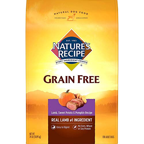 Nature's Recipe Grain Free Dry Dog Food, Lamb, Sweet Potato & Pumpkin Recipe, 24 Pounds, Easy to Digest
