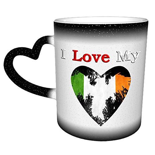 I Love My Indian National Flag Ao Novedad Café Té Taza de cerámica Oficina Trabajo Taza Regalo 11 oz