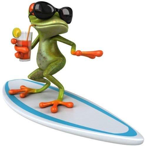 younikat Sticker Surfer Frosch I 15 x 15 cm I für Laptop Koffer Roller Motorrad Badezimmer Duschwand als Auto-Aufkleber I lustig cool wetterfest I kfz_377