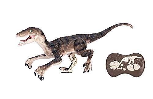 Dinosaurio Teledirigido RC Velociraptor Muy Realista! (Movimiento, Luz y Sonido) Dinosaurio...