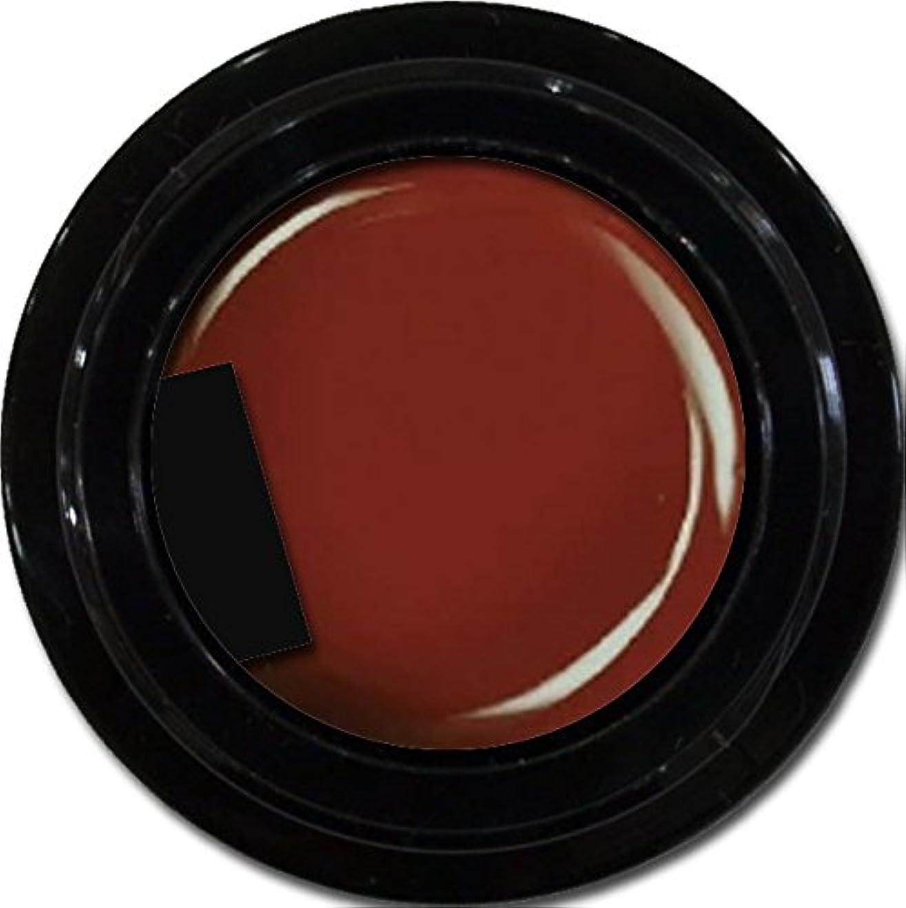 予想外タイピスト以来カラージェル enchant color gel M407 Bordeaux 3g/ マットカラージェル M407ボルドー 3グラム