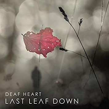 Deaf Heart