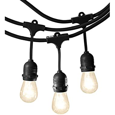 AmazonBasics Weatherproof Outdoor Patio String Lights S14 Bulb, Black, 48-Foot