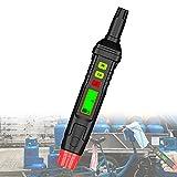 ORPERSIST Detector Fugas Gas Hogar, BolíGrafo De Detectar Gas, Sniffer De Gas Combustible, Pantalla De VisualizacióN LCD, Alarma Sonora/Luminosa para DeteccióN Fugas De Metano