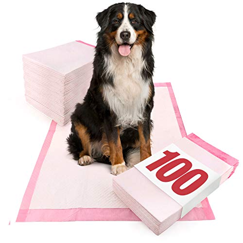 ValuePad Ultra Puppy Pads, Extra Large 28x36 Inch, 100 Count - Premium Non-Slip Training Pads for Dogs, Tear Resistant, Super Absorbent Polymer Gel Core, 5-Layer Design