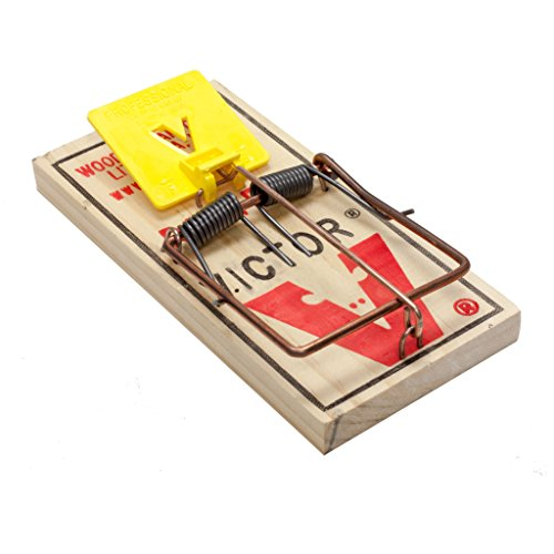 Victor 12 Easy Set Rat Traps Rat Snap Trap Quick Trapping of Rats M326