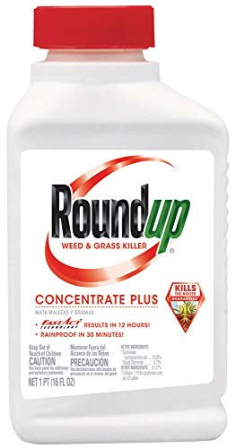 RoundUp 5005510 07018350055 Weed and Grass Killer Concentrate Plus, 16-Ounce, 16 oz