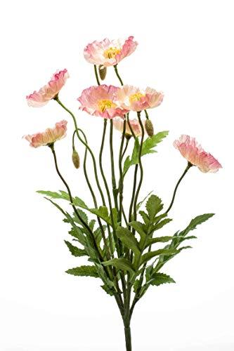 Artplants Set 12 x Amapola Artificial Vermeer en Vara de Ajuste, Rosa, 35cm - Flor Decorativa/Amapola de plástico