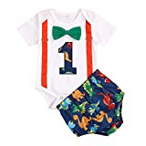 Viworld Baby Boys Cake Smash Clothes Dinosaur Bodysuit Diaper Pants Set First Birthday Outfit for...