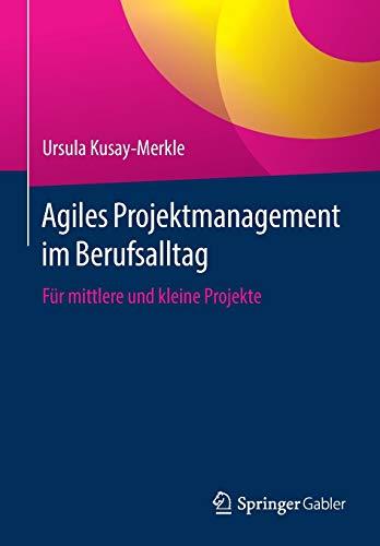 Agiles Projektmanagement im Berufsalltag: Für mittlere und kleine Projekte