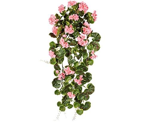 Geranienhänger con 17 Rosa farbigen Flores 80 cm, UV-continuamente - Kunstpflanzen Flores...