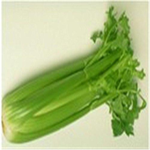 Céleri graines de légumes - 100 pcs / lot