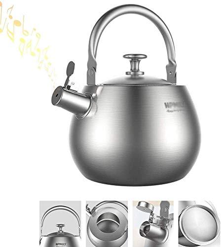 Bouilloire induction Théière Siffling Cuisinière en acier inoxydable Camping Kettle Tea Bouilloire Teaklette Cafe Café Maison Tenir Bouilloire à gaz Argent WHLONG (Size : 3.5L)