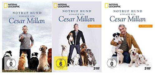 Notruf Hund - Einsatz für Cesar Millan (Staffel 1- 3) [6 DVDs]