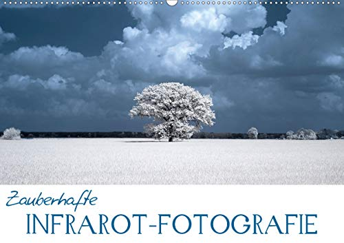 Zauberhafte Infrarot-Fotografie (Wandkalender 2021 DIN A2 quer)