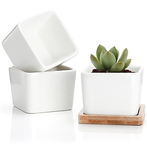Succulent Plant Pots - 3.54 Inch Small Ceramic Square Planter Containers for Flowers or Cactus with Drainage Hole and Bamboo Tray - White Set of 3
