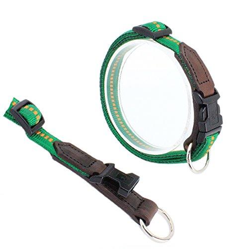 Koch GL3302012 Nylon-Leder-Halsband