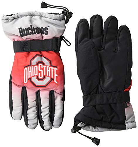 FOCO NCAA Ohio State Buckeyes Insulated Gradient Big Logo Gloves, Team Colors, Large/X-Large