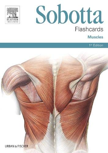 Sobotta Flashcards Muscles: Muscles