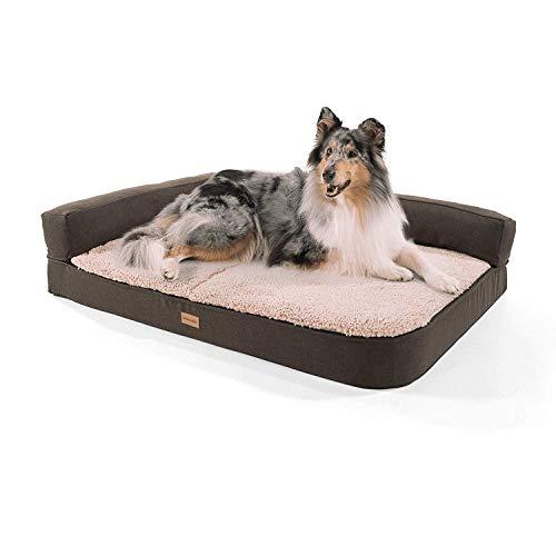 brunolie Odin großes Hundesofa in Beige, waschbar, orthopädisch und rutschfest, Hundekissen mit Abnehmbarer Lehne, Größe L (120 x 80 x 12 cm)
