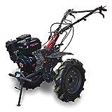 Weima WM1100FE-6 DIFF - Motoazada 13 CV 389 CCM, ancho de fresado 110 cm, marchas 4 hacia adelante, 2 cierres de eje hacia atrás, motocultor de gasolina, cultivador, jardinería